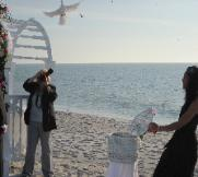 doves weddings Lee County