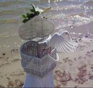 doves weddings Marco Island